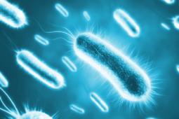 dezynfekcja-triogen-wirusy